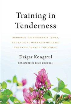 trainingintendernessbookcover