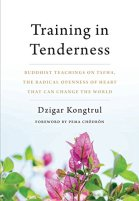 trainingintendernessbookcover